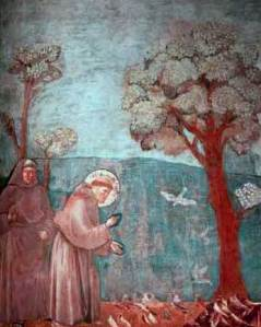 francescopredicauccelli